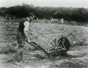 An ingenious manually-operated hay-turning...