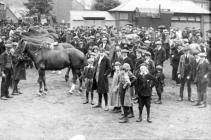 Requisitioning horses at Smithfield Market in 1914