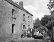 Nantllwyd, Llanddewi Brefi, 1955