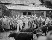 Mr Robert Jones, Caerberllan Farm, Tywyn, shows...