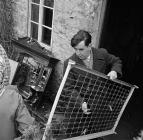 Gadael Tŷ Uchaf, Ciltalgarth, Capel Celyn, 1961