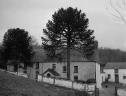 Pantycelyn, the home of the hymn-writer William...