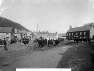 Cattle fair, Tal-y-bont, Cardiganshire, c. 1885