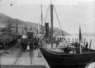 Unloading timber, Aberdyfi c. 1885