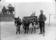 Llanfair carrier with his donkeys, c. 1885