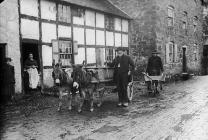 Charles and his mules, Meifod, c. 1885