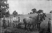 Hay making, c. 1875