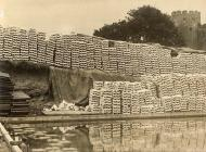 Tyfu wystrys yng Nghonwy, 1921