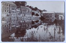 The Old Quay, Haverfordwest, c. 1900