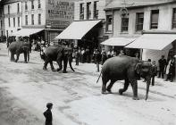 Circus parade with Elephants, Lammas Street,...