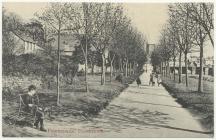 The Promenade by the River Usk, Brecon, 1900s