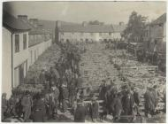 Sheep market, Builth Wells, 1905