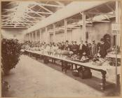 Flower show in Brecon, 1890s