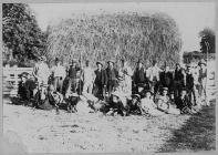 Harvest helpers near Merthyr Cynog, Breconshire...
