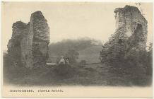 Montgomery Castle remains