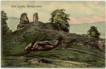 Adfeilion Castell Trefaldwyn