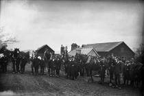Photograph of horses (Poulson), c193?-??-??,...