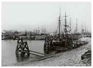 General view of Cardiff Docks, c. 1891