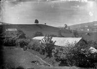 Photograph of Lower Caellany by J.B.Willans
