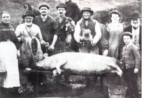 Pig killing, Maescar c. 1900