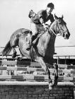 Syr Harry Llewellyn ar gefn Foxhunter lle enillodd fedal aur yng ngemau Olympaidd Helsinki 1952