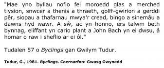 Disgrifiad o wersyll gwyliau Butlins Pwllheli