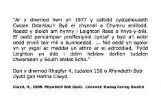 Leighton Rees o Ynys-y-bŵl yn ennill cystadleuaeth Cwpan Ddartiau'r Byd 1977