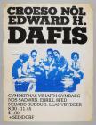 Croeso Nl Edward H Dafis gig poster [Welsh]