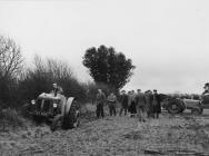 Arddangosiad tractor David Brown Cropmaster mewn cae