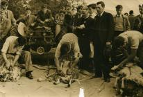 Pencampwriaeth cneifio yn Rali'r Ffermwyr Ifanc, Penbedw, 1954, Glynne Davies yn beirniadu