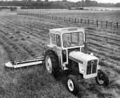 Tractor David Brown yn lladd gwair