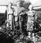 Ffasiwn 1950au
