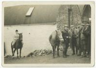 Hunt meet on Pantyrefail farm Ffostrasol,...