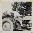 Ferguson tractor on Dolwerdd farm, Talley c.1956