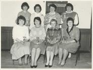 Llansawel W.I. Ladies Darts Team