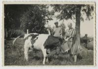 Margaret a John David Hughes yn bwydo llo ar...
