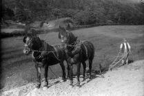 ploughman and his horses