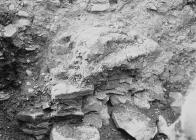 Rocks, Radnorshire