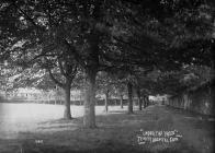 """"""" Under the trees"""" Trinity Hospital Clun"""