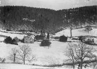 ' Stowe' in winter