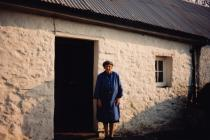 Old cottage in Rhydybeillen, Llanarth