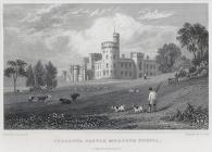 Cyfartha castle, Merthyr Tydvil, Glamorganshire