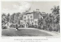 Dimland castle, Co. Glamorgan, the seat of...