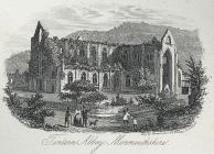 Tintern Abbey, Monmouthshire