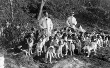 The Tivyside Hunt