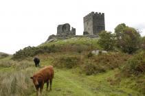 Dolwyddelan Castle 18