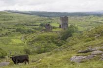 Dolwyddelan Castle 19