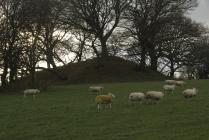 Tal-y-Cafn Castle 04