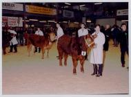 22. Young Farmers Club at the Winter Fair,...