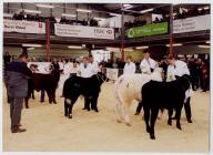 28. Young Farmers Club at the Winter Fair,...